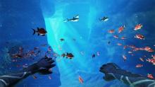 ironfish3